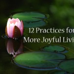 12 Tips for Finding Joy